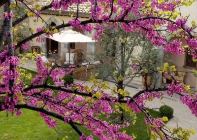 Logis du Bourg: Jardin